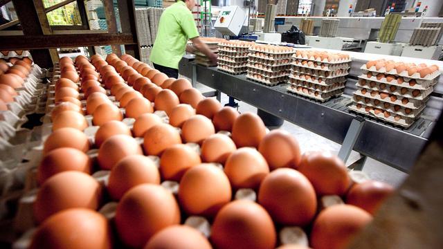 'Dieronvriendelijk kooi-ei ligt nog bij een derde van de buurtsupers'