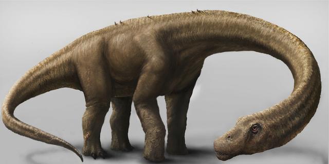 Gigantische 'niets-vrezende' dinosaurus ontdekt