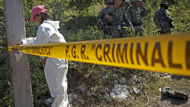 Elf familieleden komen om bij moordpartij Mexico