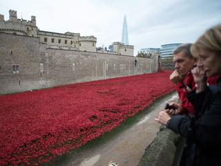 Monument voor Eerste Wereldoorlog bevat 888.246 porseleinen bloemen