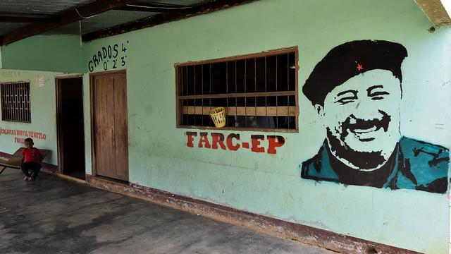 'FARC kondigt tijdelijk eenzijdig staakt-het-vuren af'