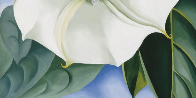 Schilderij kunstenares Georgia O'Keeffe verbreekt record