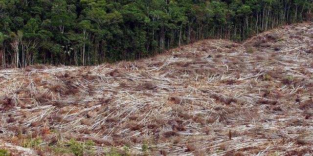 Krap 3 procent van ecosystemen is nog in zelfde staat als 500 jaar terug