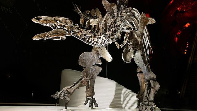 Meest complete Stegosaurusmodel tentoongesteld in Londen