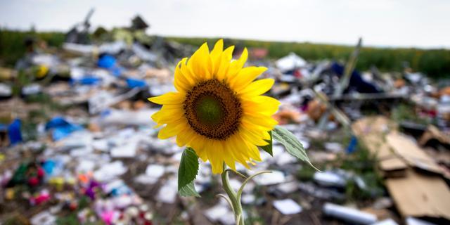 'Mogelijk weer menselijke resten gevonden op rampplek MH17'