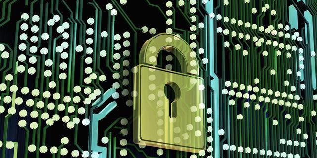 Nederlandse overheid krijgt toegang tot databases van Have I Been Pwned