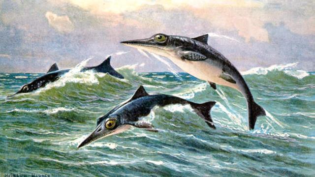 'Ichthyosaurus heerste in prehistorische oceaan door goede neus'