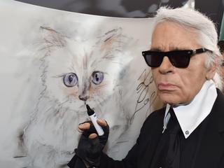 'Choupette is de beroemdste en rijkste kat ter wereld'