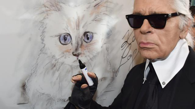Kat Karl Lagerfeld verdient 3 miljoen