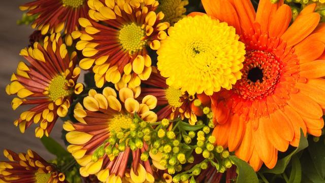 Inbrekers Brabants bedrijf keren terug met bloemetje