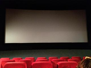 Over nut en noodzaak van de bioscoop is al geruime tijd discussie