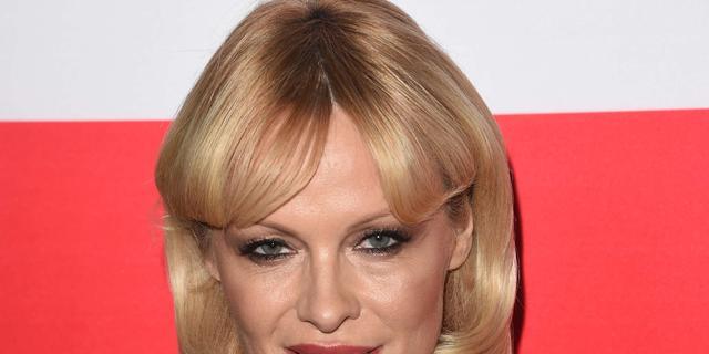 Pamela Anderson en ex gooien met modder naar elkaar