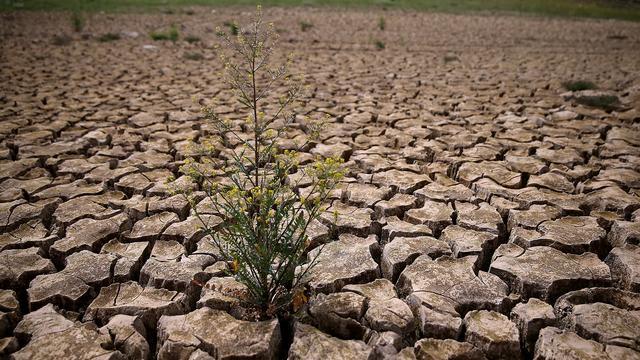 Californië legt watergebruik aan banden