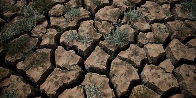 Waterbeperking voor boeren in Californië door extreme droogte