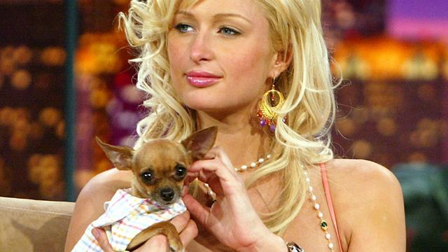 Paris Hilton voelde zich gevangen in imago van dom blondje