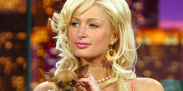 Paris Hilton kapot van dood hondje Tinkerbell