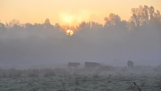 Eerste landelijke vorstdag van najaar en koudste 30 september sinds 1901