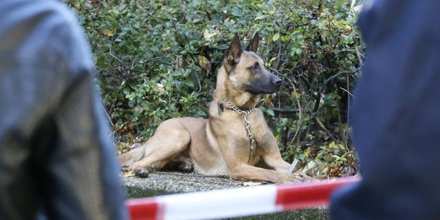 Taakstraf voor man die politiehond met ketting en stroomstoten mishandelde