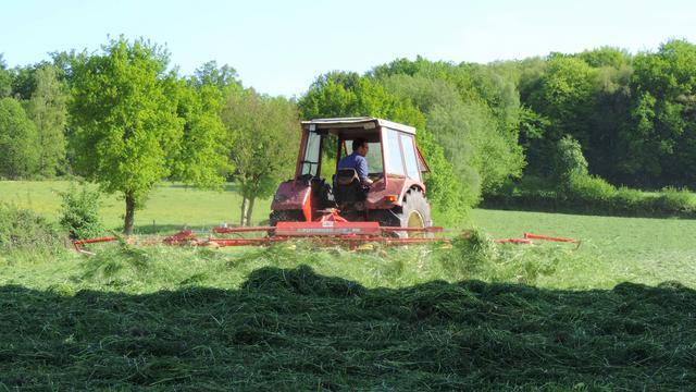 Natuurorganisaties en landbouw in overleg om verdwijnen insecten