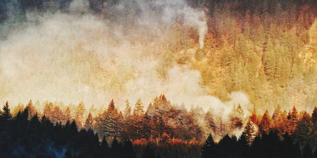 Amerikaanse tiener krijgt 31 miljoen euro boete voor natuurbrand