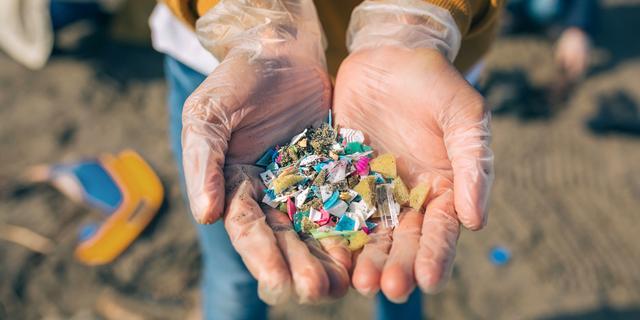 Plastic vis eten? 'Je kunt niet aan microplastics ontsnappen'