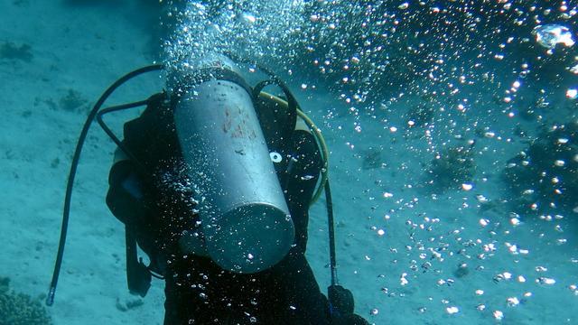 Aanval haai kost Tsjechische duiker in Egypte het leven