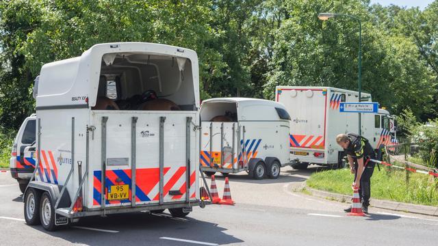 Verdachte van doodsteken zwangere vriendin in Lopik aangehouden