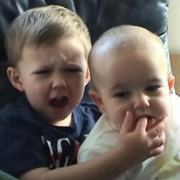 Veelbekeken video Charlie bit my finger verdwijnt van YouTube na veiling