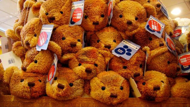 Vijftienhonderd knuffels voor zieke Zeeuwse kinderen