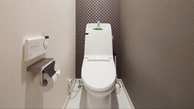 Japanse wc's hebben een bedieningspaneel dat makkelijk is te bereiken. Dit exemplaar heeft het fonteintje boven de spoelbak. Het water waarmee je de handen hebt gewassen, wordt gebruikt om door te spoelen.