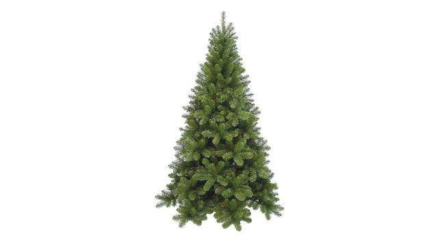 Voedselbank, Hornbach en OOG TV geven twintig kerstbomen weg