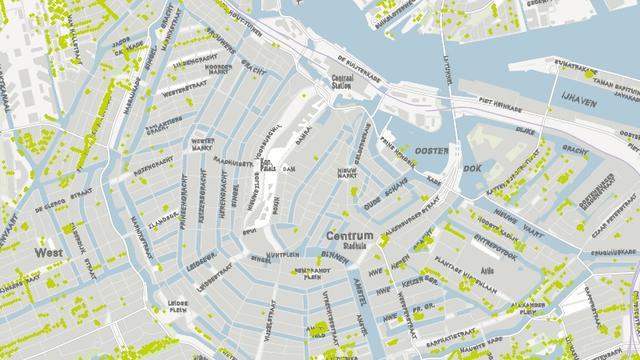 Gemeente zet alle 270.359 bomen in de stad op een kaart