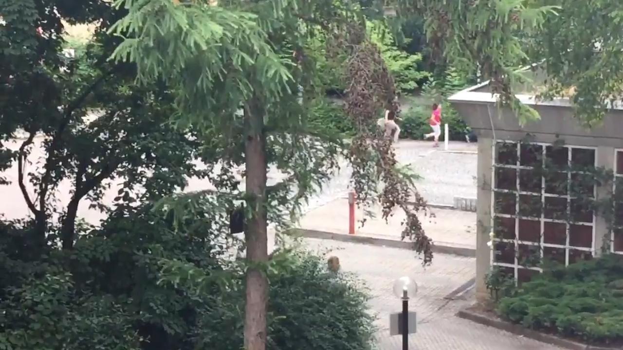 Mensen rennen weg van schietpartij winkelcentrum München