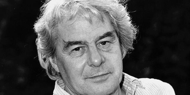 Dichter Lucebert was nazi-sympathisant blijkt in nieuwe biografie