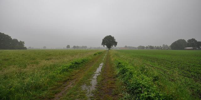 Weerbericht: Zacht en bewolkt met soms regen