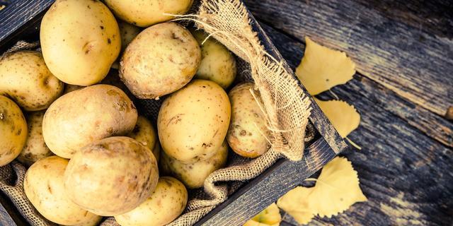 Wat is de beste aardappel voor stamppot?