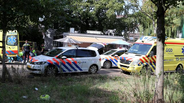 In Delft doodgeschoten man is crimineel Karel Pronk