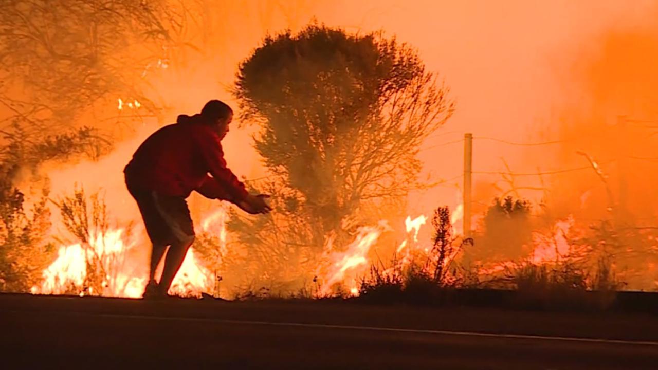 Man redt konijn van hevige bosbrand in Los Angeles