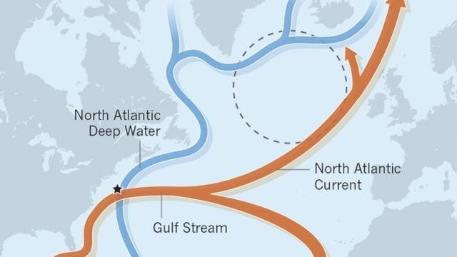 De warme Golfstroom is onderdeel van een complex geheel van oceaanstromingen in de Atlantische Oceaan, door wetenschappers de 'AMOC' genoemd. Door afzwakking krijgt Nederland door extra westenwind juist warmere en nattere winters. Onze zomers worden juist droger, en de Nederlandse kust kan extra zeespiegelstijging krijgen.
