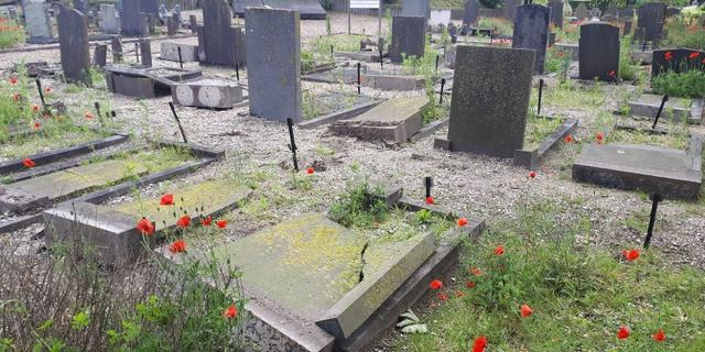 Meer dan honderd graven vernield op begraafplaats 's-Gravenzande