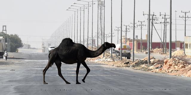 'Saudi-Arabië schrapt projecten onder druk van lage olieprijs'