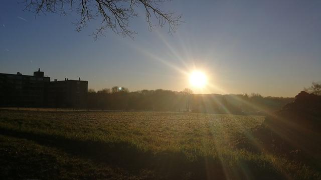 Weerbericht: Fris lenteweer met behoorlijk veel zon maar ook wind