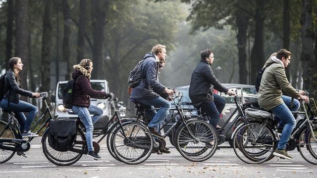 Utrechters mogen meebeslissen over herinrichting Maliebaan