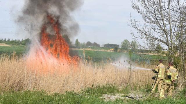 Brandweer rukt uit voor flinke bermbrand aan Nieuwlandseweg in Ritthem