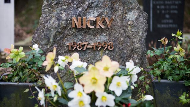 Politie bereikt na twintig jaar 'grote doorbraak' in zaak Nicky Verstappen