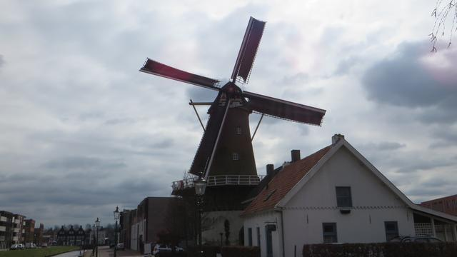 Etten-Leurse molens volop in belangstelling op 25ste West-Brabantse Molendag