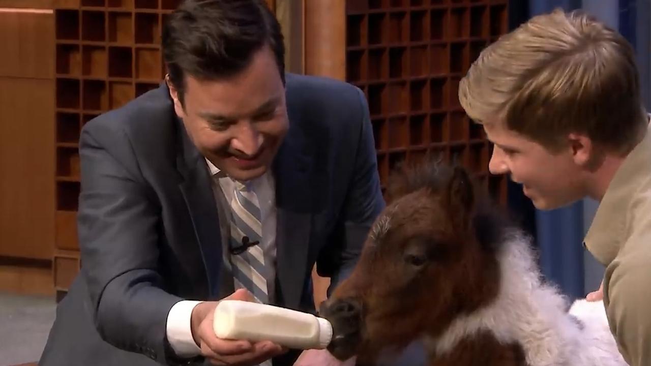 Jimmy Fallon krijg een kus van het dwergpaard van Robert Irwin