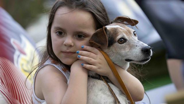 'Honden begrijpen zowel woorden als intonatie van baasje'