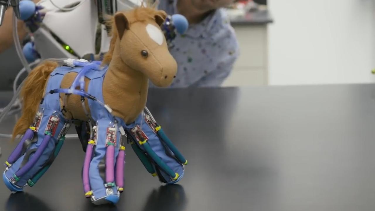 Uitvinders laten knuffel lopen met 'robothuid'