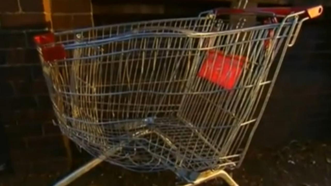 Zweed overleden na rit in winkelwagentje